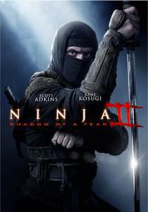 Ninja, to idealna rola dla większości współczesnych aktorów. Bardzo poprawia wygląd.